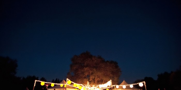 Summer Arboretum Wedding with lots of lights and laughter {Emily & Joe} Brainerd MN