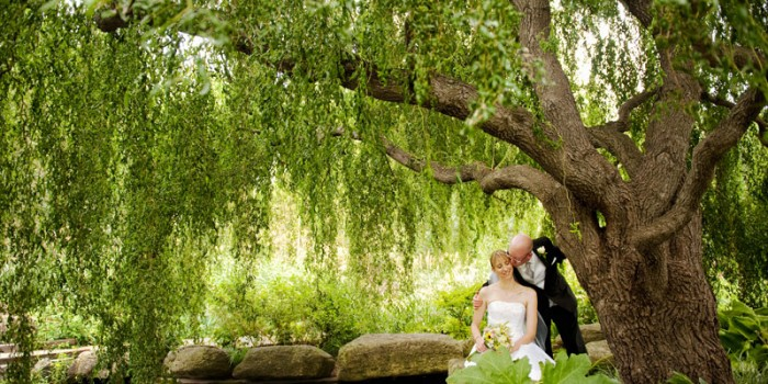 olbrich garden wedding madison photographer