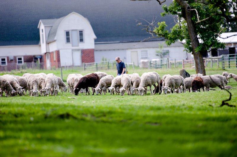 shephards way farm Minnesota editorial photographer