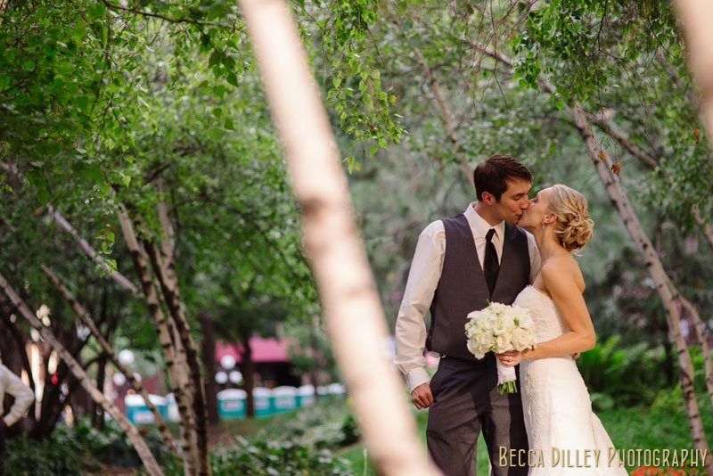 bride and groom kiss between birch trees