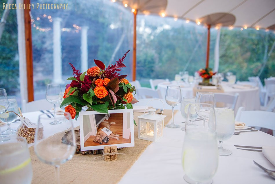 tent wedding at Willowdale Estate in Topsfield MA