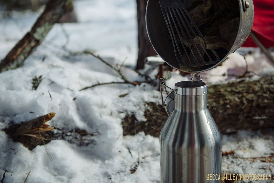 ely winter boundary waters spruce tip tea