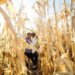 corn minnesota farm engagement photos with cows and tractors