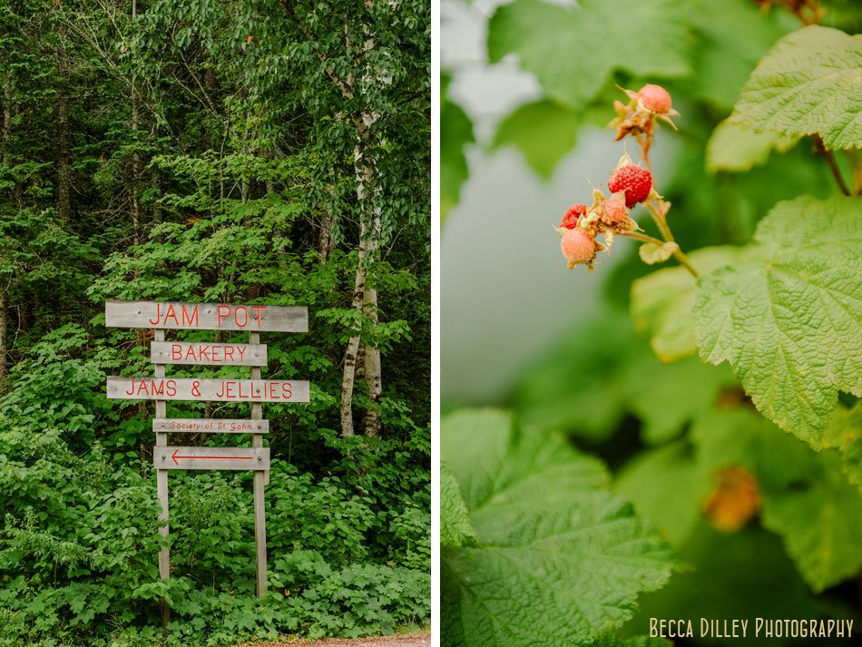 thimbleberries minnesota editorial photographer book images lake superior flavors