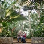 Como Conservatory Engagement Photos