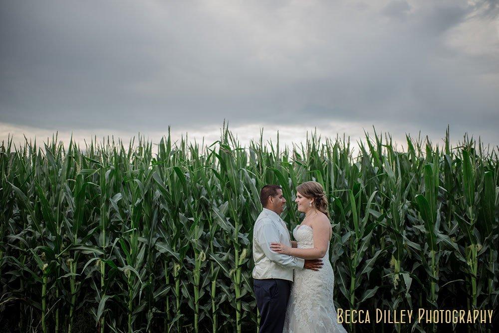 corn field MN Farm wedding