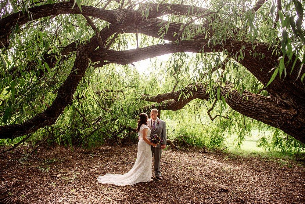 MN Landscape Arboretum Wedding under willows