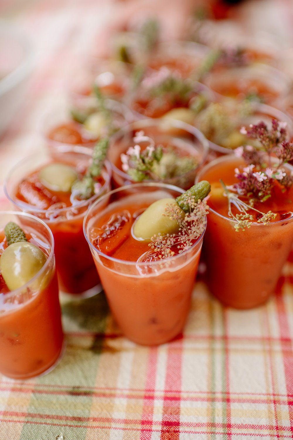 2017 favorite photos best Minneapolis photographer bloody mary