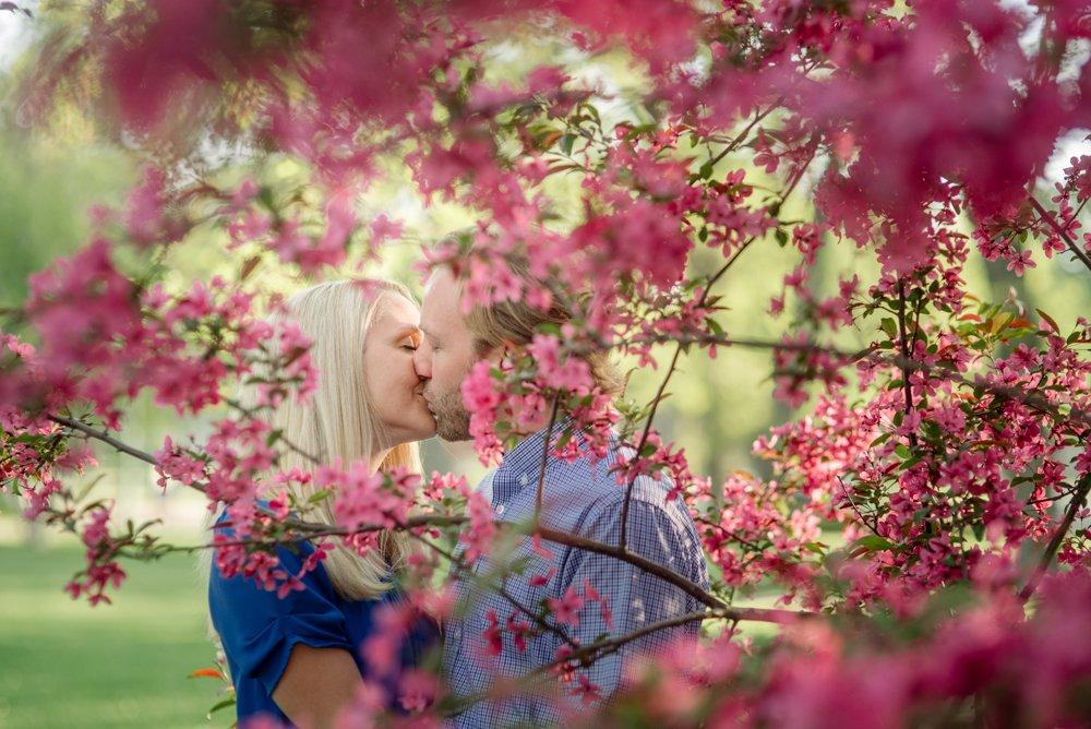 2017 favorite photos best Minneapolis photographer pink flowers