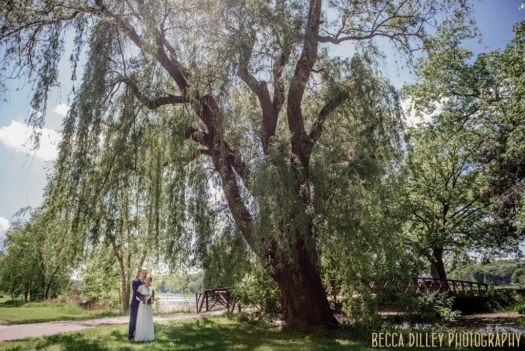 giant willow tree with couple underneath If you are planning your MN elopement