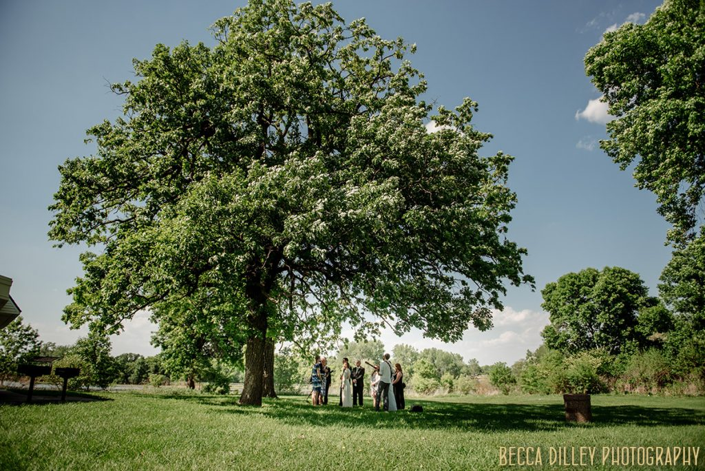 wedding ceremony under minneapolis parks tree If you are planning your MN elopement